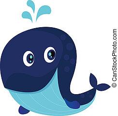 ballena azul, océano, caricatura, grande