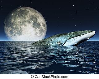 Ballena en los océanos superficie con luna llena