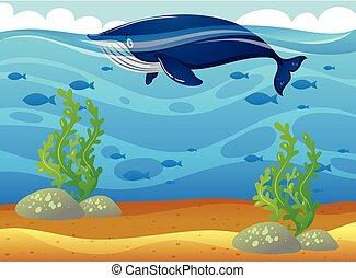 Ballena nadando en el mar