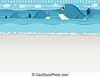 Ballenas nadando en el océano