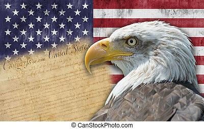 bandera americana y águila calva