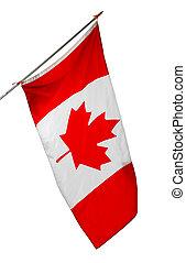 bandera, fondo blanco, canadá, nacional, aislado