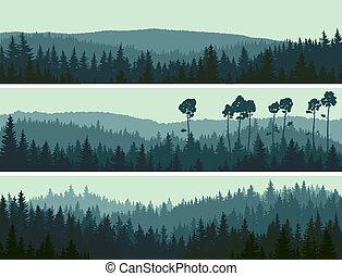 Banners of hills Coniferous Wood.