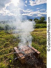 Barbacoa con deliciosa carne a la parrilla