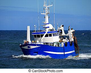 Barco de pesca D