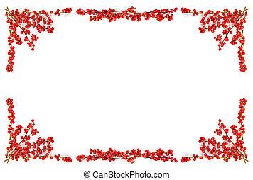 bayas, frontera, navidad, rojo