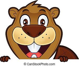Beaver sosteniendo y mirando sobre un cartel en blanco