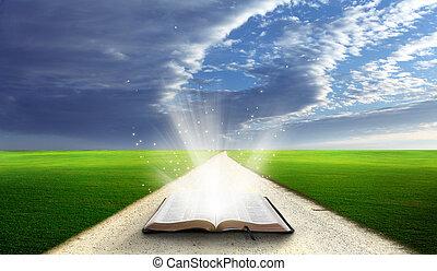 biblia abierta, field.