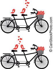 Bicicleta con aves de amor, vector