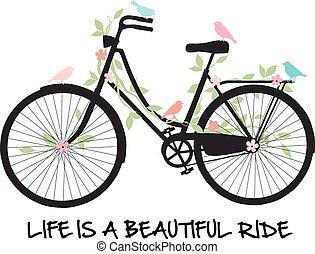 Bicicleta con pájaros y flores