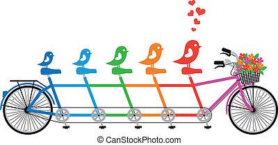bicicleta, familia , pájaro, vector