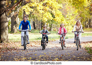 bicicletas, familia