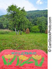 Bienvenida alfombra