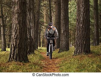 biking, hombre, practicar, montaña, bosque