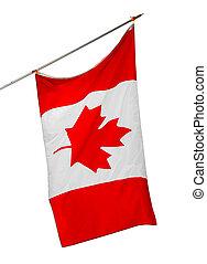 blanco, aislado, plano de fondo, bandera canadá, nacional