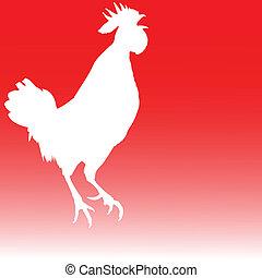 blanco, gallo, ilustración