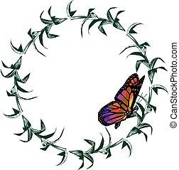 blanco, hermoso, monarca, aislado, mariposa, plano de fondo