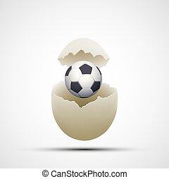 Bola de fútbol en un huevo de pollo. Vector de acciones.