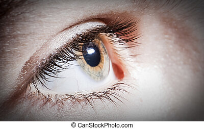 Bola ocular cerca