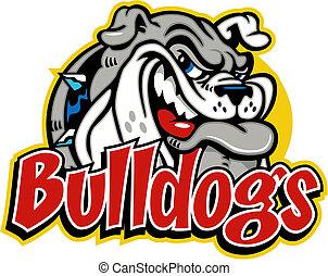 Bonita cara de bulldog sonriente