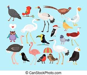 Bonitas aves vectoriales