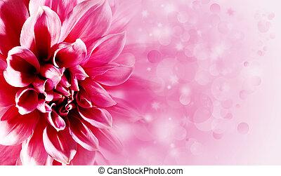 Bonitas flores de loto para tu diseño