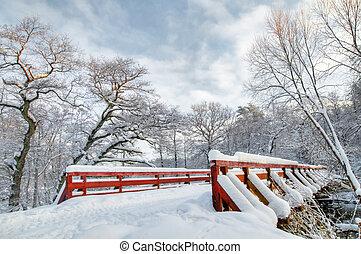 Bosque blanco de invierno