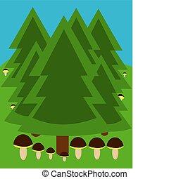 Bosque con hongos