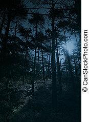 Bosque de luna llena
