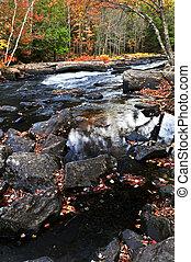 Bosque de otoño y paisaje del río