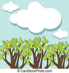 Bosque Evergreen de día
