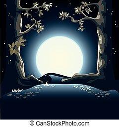 bosque, noche, claro