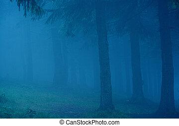 Bosque oscuro y soñado con niebla. Trasfondo Beatuful.
