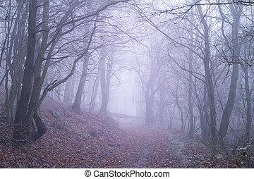 Bosque púrpura