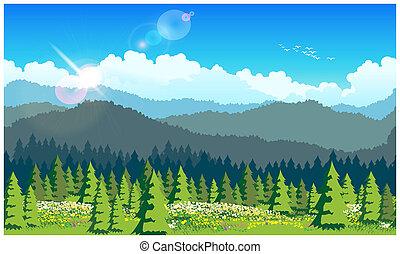 bosque, pintoresco