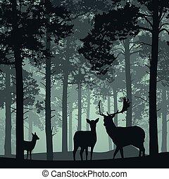 Bosque profundo con ciervos, ciervos y cervatillos