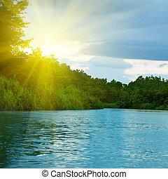 bosque, profundo, lago