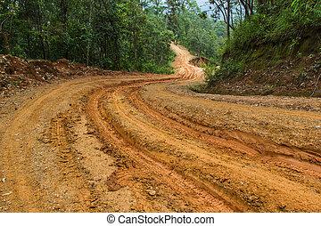 Bosque tropical con un camino de tierra