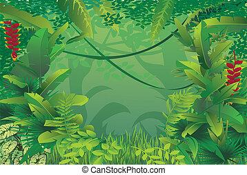 Bosque tropical exótico
