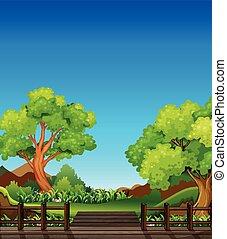Bosque y puente