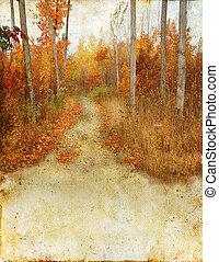 Bosques de otoño sobre fondo grunge