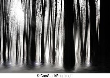 Bosques espeluznantes en BW con inundaciones