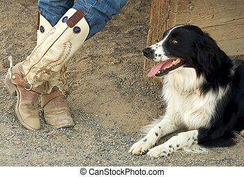 Botas de vaquero y perro
