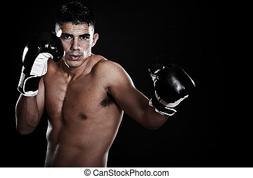 Boxer hispano