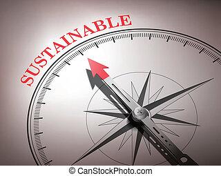 brújula abstracta con aguja apuntando la palabra sostenible