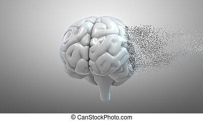brain., desorden, mental, 3d, interpretación, desintegración, humano, salud, conceptual, total, relacionado