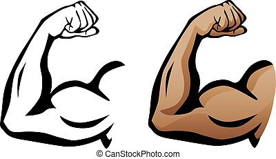 Brazo muscular flexionando bíceps