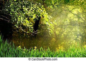 Brillante día de verano en el bosque, antecedentes naturales