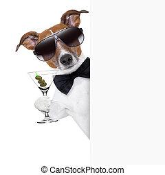 brindar, perro