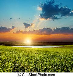 Buen atardecer sobre el campo verde con estanque